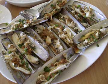 Mexican Geoduck Clams